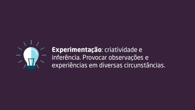 Experimentação: criatividade e inferência. Provocar observações e experiências em diversas circunstâncias.